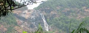 Dudhsagar Waterfalls view from jungle trek