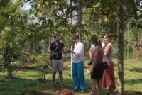 Guests enjoying the Spice plantation tour
