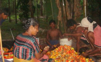 Processing of cashew fruits