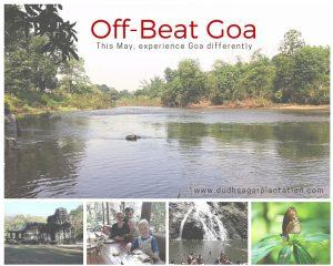 OffBeatGoa_experience_Goa_differently