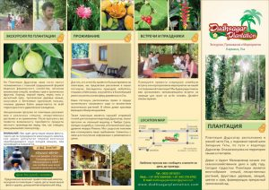 Dudhsagar Plantation Goa Flyer russian language